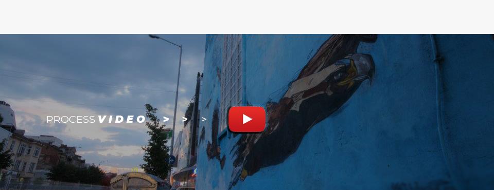 Save Raptors mural / Process Video